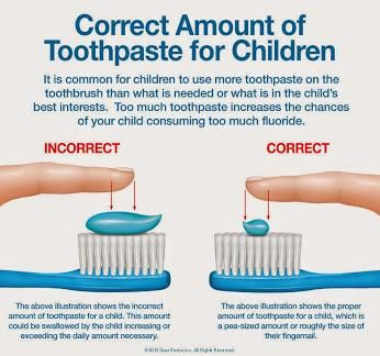 Charlotte family dentist describes how much toothpaste to use for children